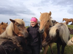 Hästprat på Island