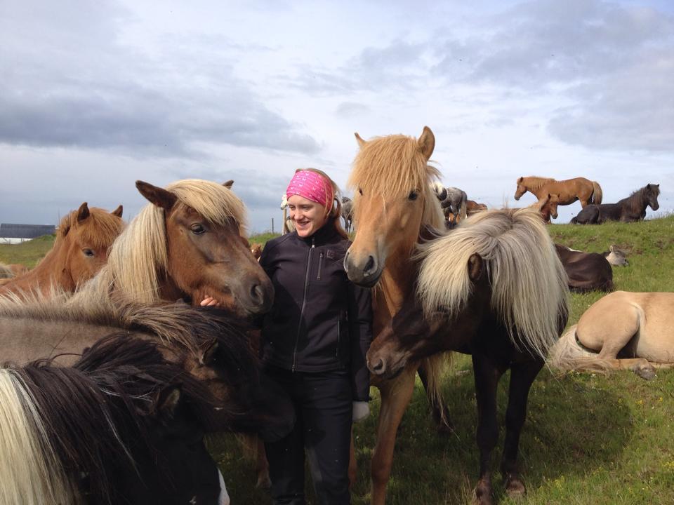 Hej söta hästar!