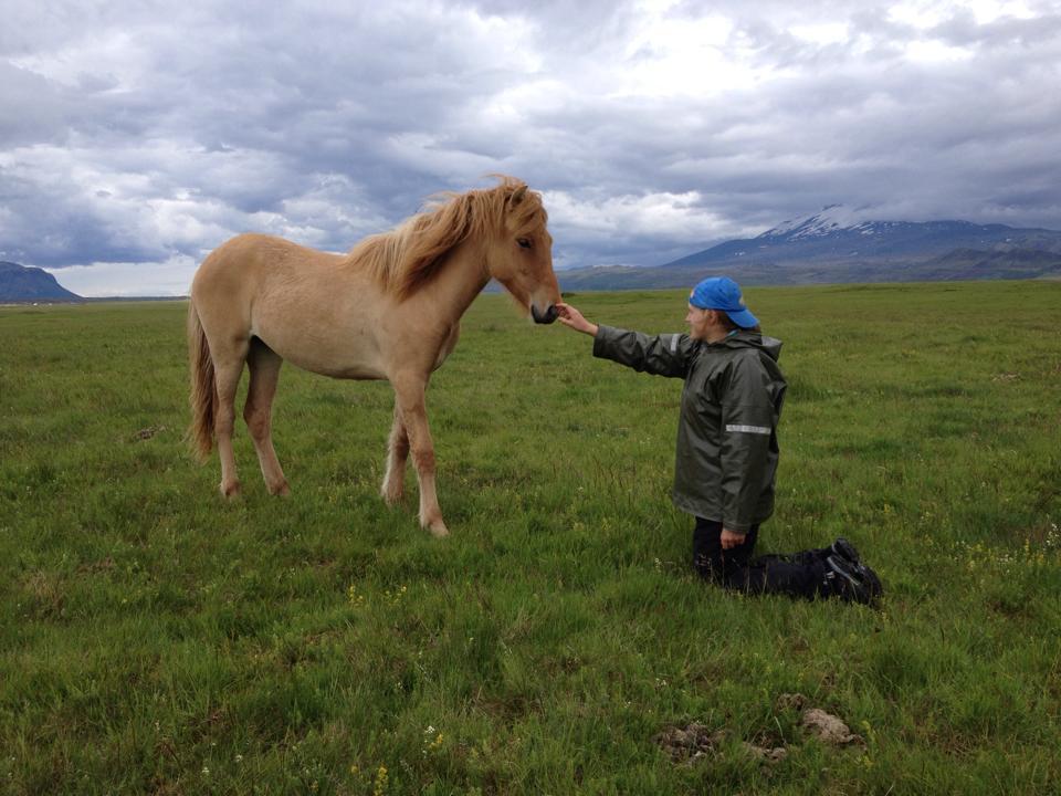 Hej min lilla häst!