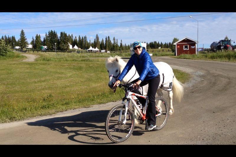 Hästar är inte bara att hoppa upp och rida - På SM kunde jag kombinera två intressen när Assa skulle röra på sig.