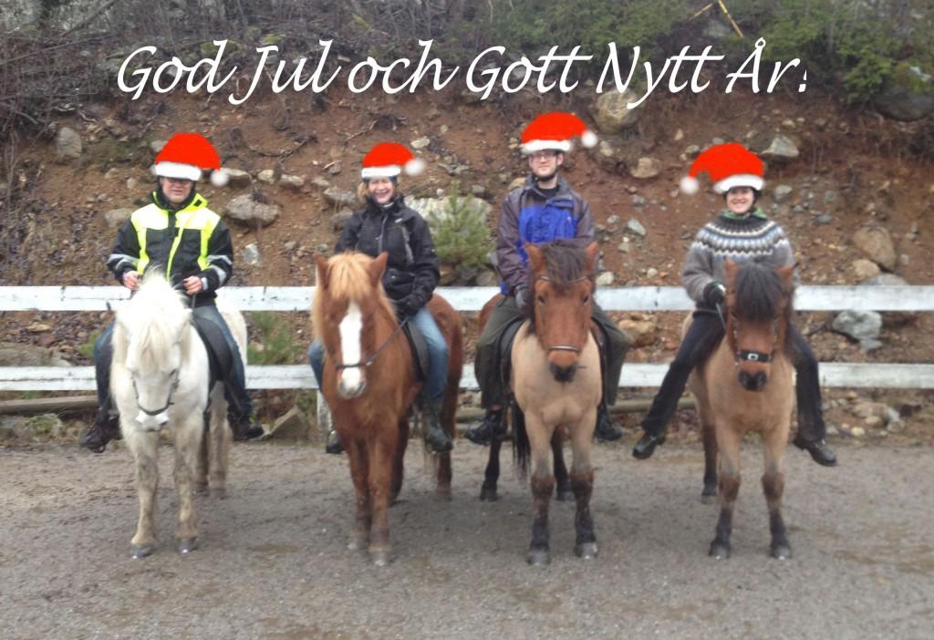 God Jul önskar alla vi på Drakboda!